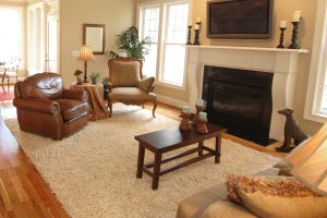 Area Rug Cleaning Service Twin Cities Mn