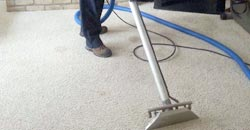 Twin Cities Carpet Cleaning Contractor