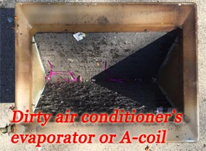 A-Coil Cleaning Twin Cities MN