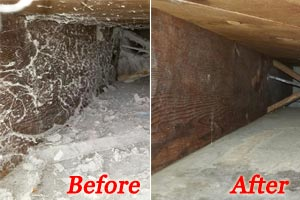 Duct Cleaning Service MN