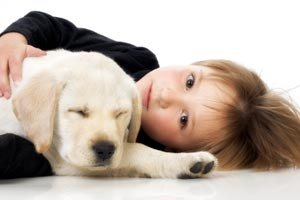Dog Cat Stain Carpet Cleaning Twin Cities